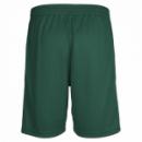 Hummel Core Poly Shorts für Kinder dunkelgrün