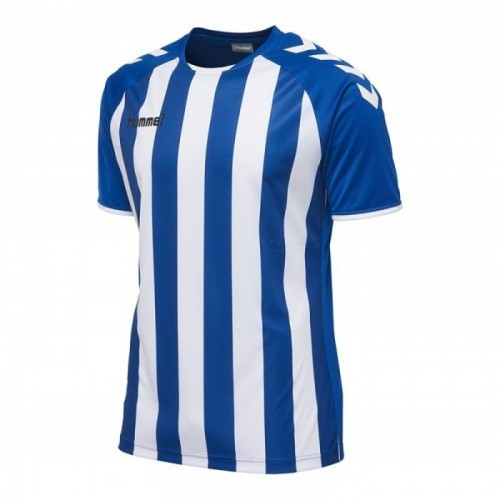 Hummel Core Striped ss Jersey blau/weiß