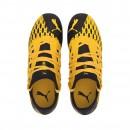 Puma Soccer Shoes Future 5.3 Netfit FG/AG